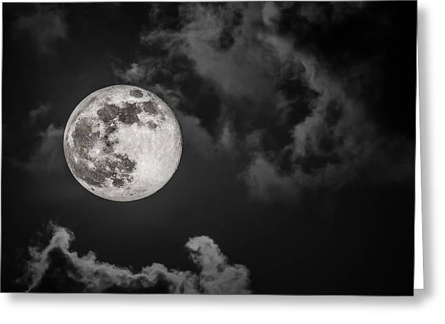The Full Moon Is Calling Greeting Card by Andres Leon