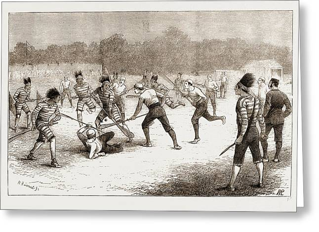 The Game Of Lacrosse, MÊlÉe Between Canadians Greeting Card by Litz Collection