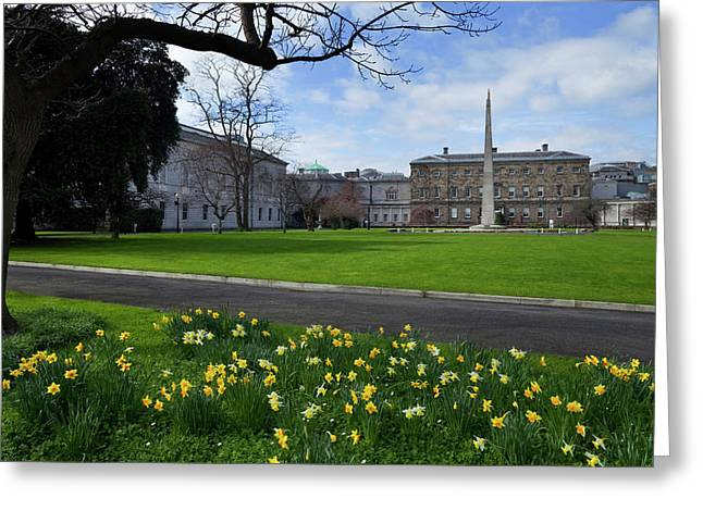 The Gardens At The Rear Of Leinster Greeting Card by Panoramic Images