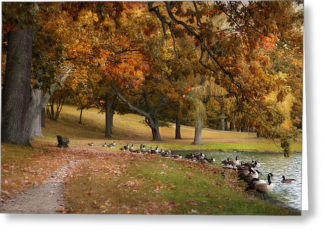 Greeting Card featuring the photograph The Gathering by Robin-Lee Vieira