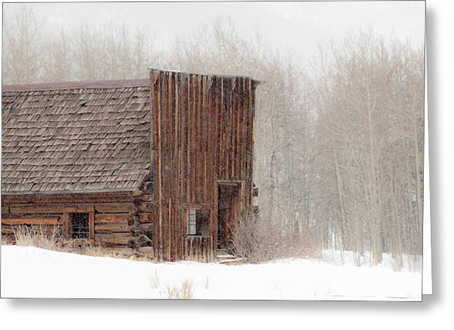 The General Store Greeting Card by Gigi Embrechts