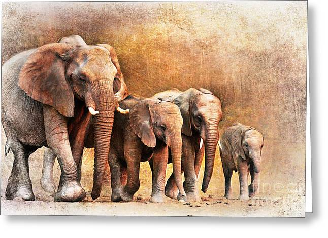 The Generations Greeting Card by Lyndsey Warren
