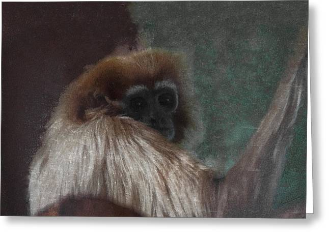 The Gibbon Greeting Card