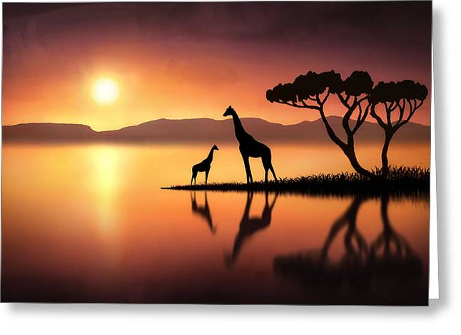 The Giraffes At Sunset Greeting Card by Jennifer Woodward