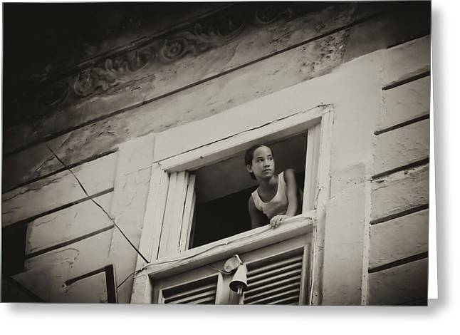 The Girl In The Window Greeting Card
