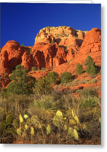 The Glory Of The Desert Red Rocks 1 Greeting Card