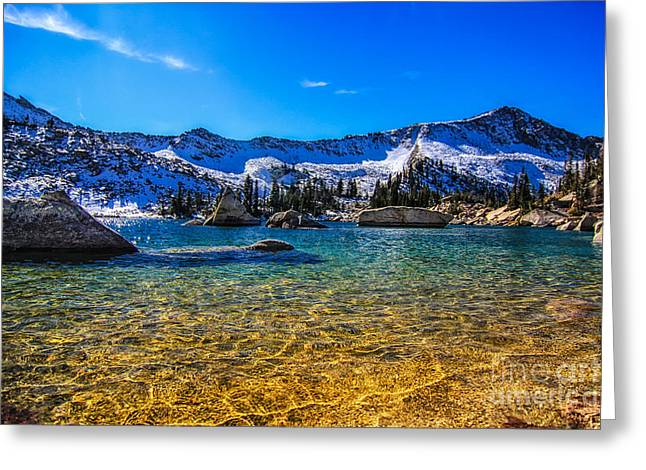 The Gold Lake Bottom Greeting Card by Mitch Johanson
