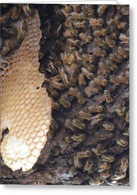 The Golden Hive  Greeting Card by Shawn Marlow