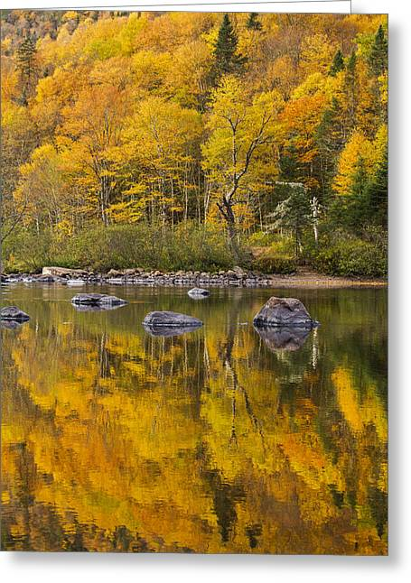 The Golden Mirror Greeting Card