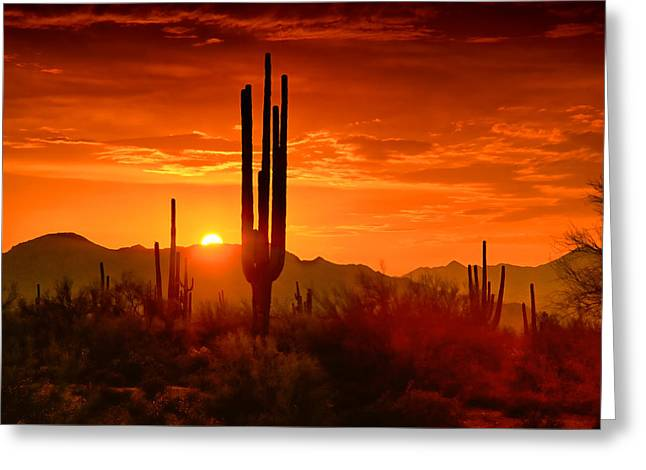 The Golden Southwest Skies  Greeting Card by Saija  Lehtonen