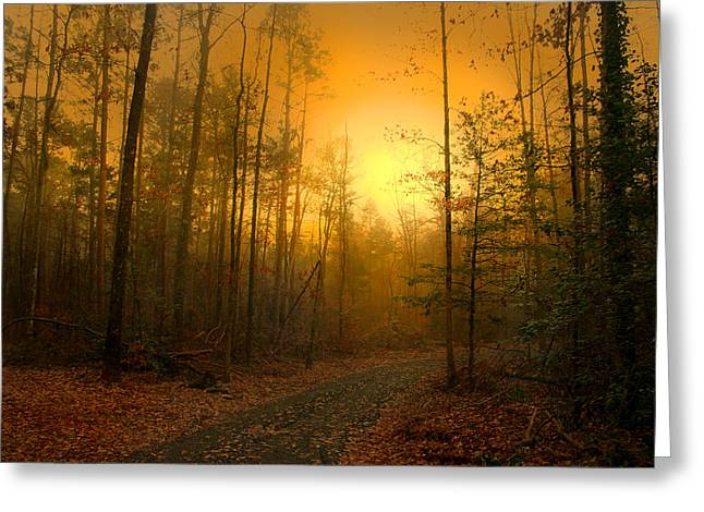 The Golden Touch Of Autumn Greeting Card by Nina Fosdick