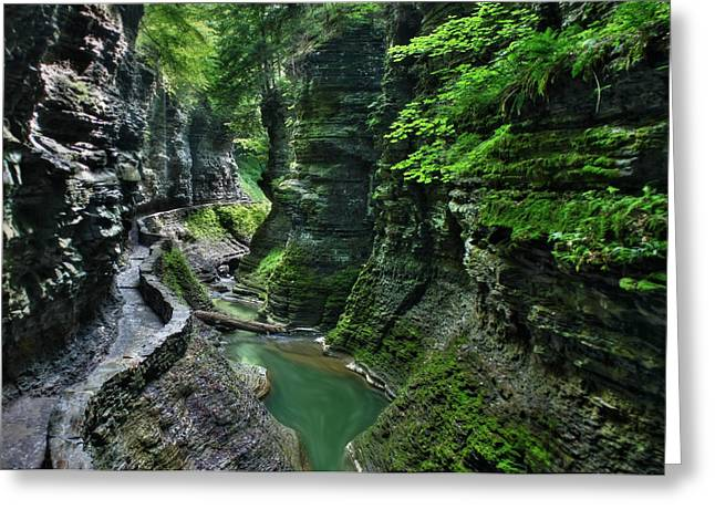 The Gorge Trail Greeting Card by Lori Deiter