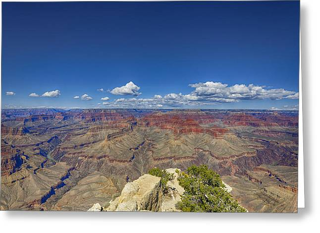 The Grand Canyon--another Look Greeting Card by Angela A Stanton