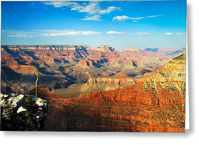 The Grand Canyon At Sunset Greeting Card by Gregory Ballos
