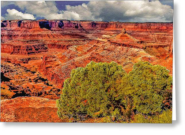 The Grand Canyon Dead Horse Point Greeting Card by Bob and Nadine Johnston