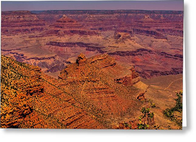 The Grand Canyon Iv Greeting Card by David Patterson