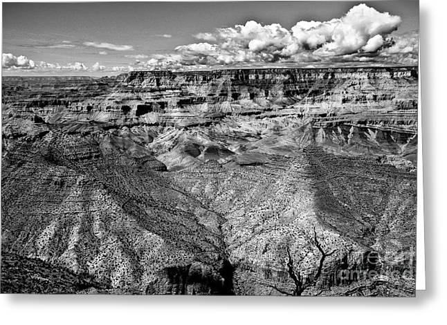 The Grand Canyon Greeting Card by Bob and Nadine Johnston
