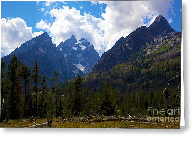 The Grand Tetons  Greeting Card by Terry Horstman
