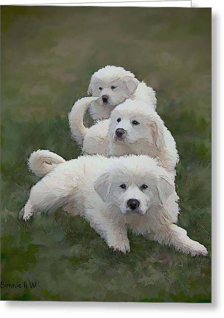 The Great Pyranise Pups  Greeting Card by Bonnie Willis