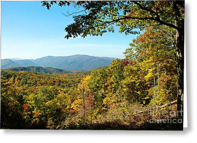 The Great Smoky Mountains Greeting Card by Lena Auxier