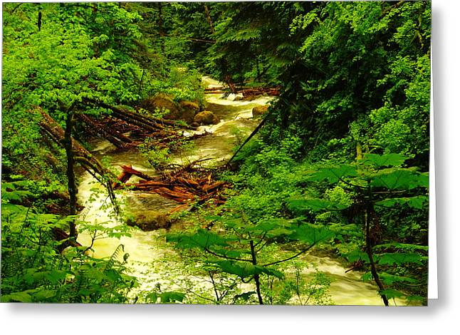The Green And Water Winding Through My Dreams Greeting Card by Jeff Swan