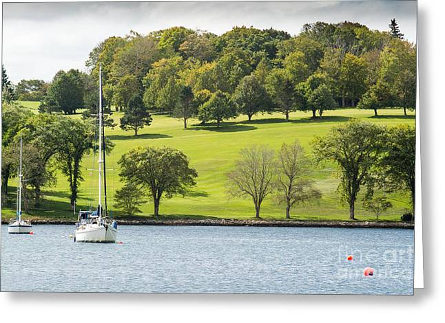 The Green Hills Of Lunenburg Greeting Card