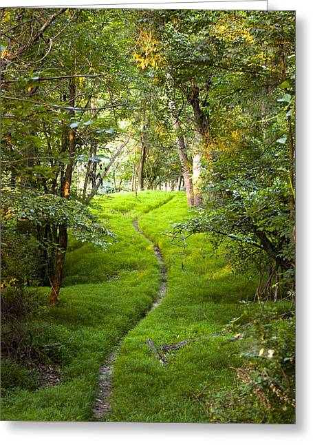 The Green Path Greeting Card