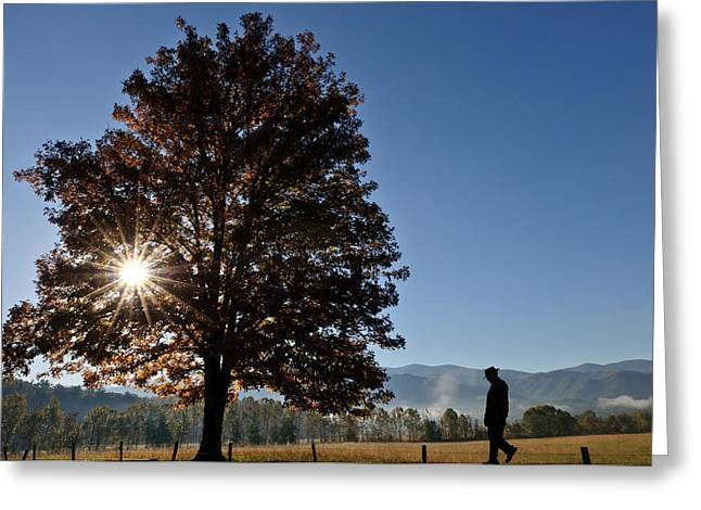 Greeting Card featuring the photograph The Guiding Light In Cades Cove by Tyson and Kathy Smith