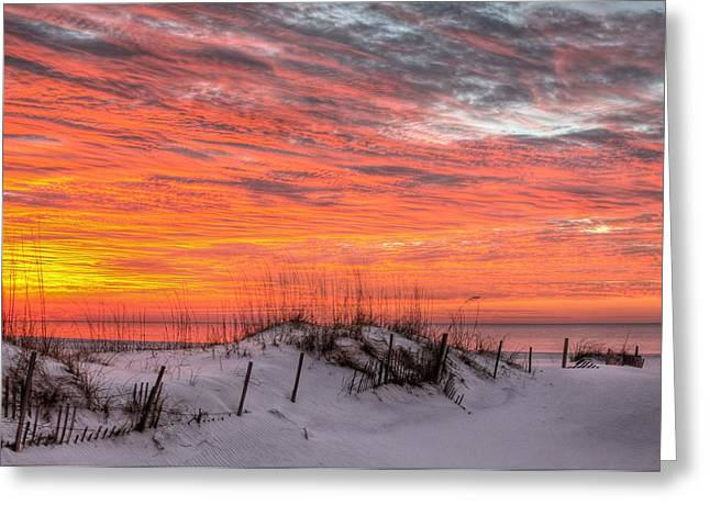 The Gulf Shores Of Alabama Greeting Card by JC Findley