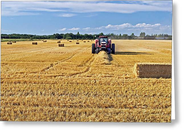Greeting Card featuring the photograph The Harvest by Keith Armstrong