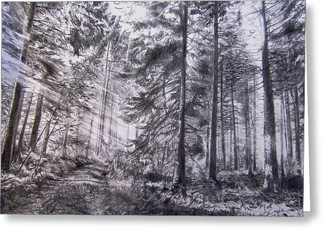 The Hidden Elements Within A Forest Greeting Card