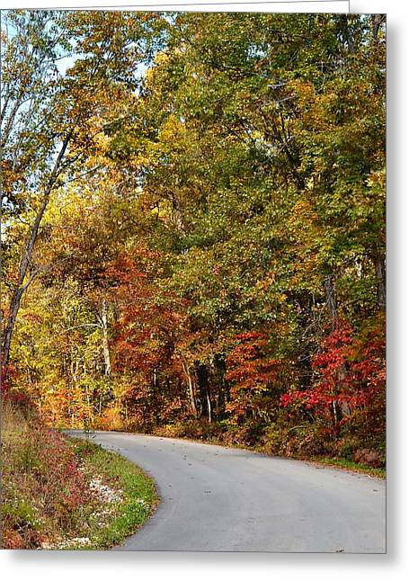 The High Road Greeting Card by Deena Stoddard