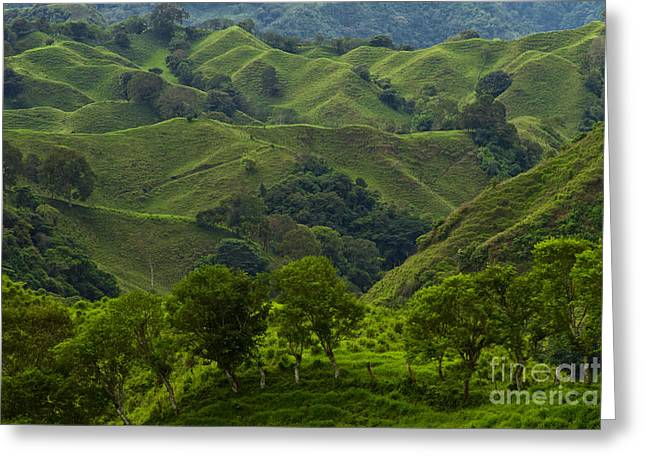 The Hills Of Caizan Greeting Card