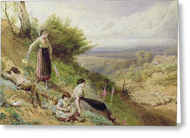 The Hillside, Or Gathering Foxgloves Wc On Paper Greeting Card by Myles Birket Foster