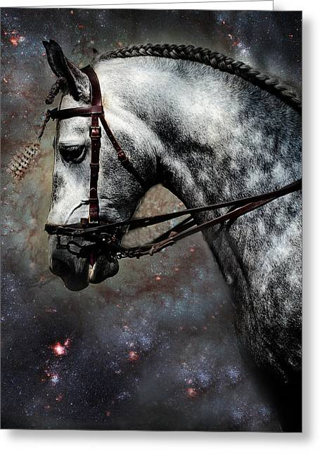 The Horse Among The Stars Greeting Card