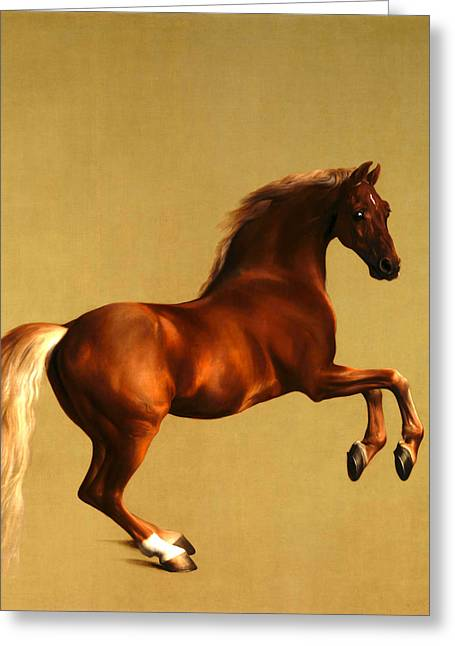 The Horse Greeting Card by George Stubbs