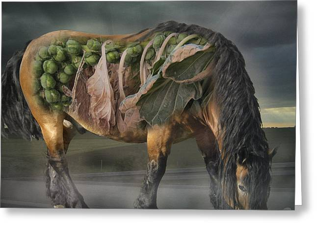 The Horse Of Mr. Roentgen Greeting Card by Nafets Nuarb
