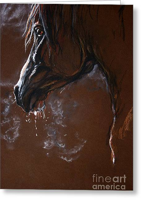 Horse Art Pastels Greeting Cards - The Horse Portrait Greeting Card by Angel  Tarantella