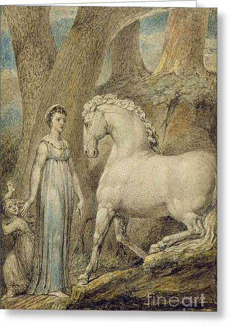 The Horse Greeting Card by William Blake