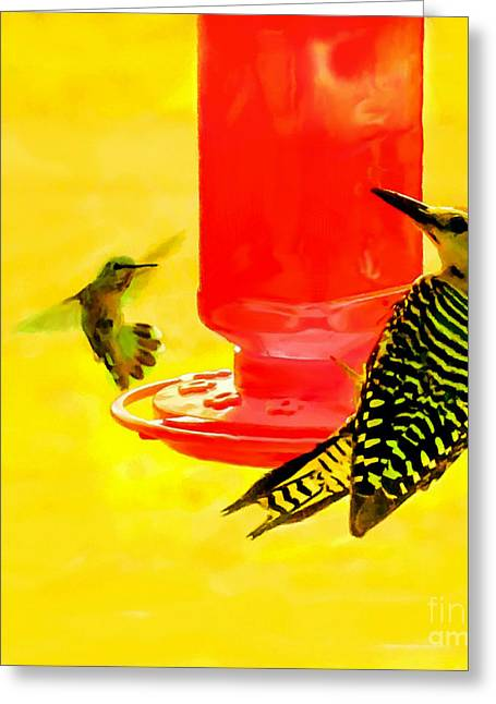 The Humming Bird And Gila Woodpecker Greeting Card by Bob and Nadine Johnston