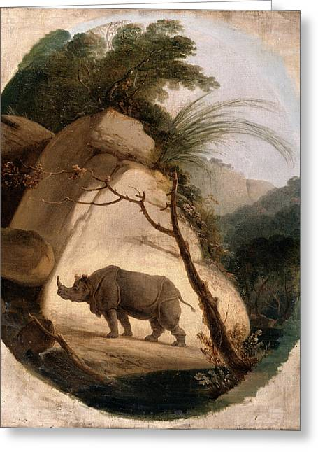 The Indian Rhinoceros, Thomas Daniell, 1749-1840 Greeting Card by Litz Collection