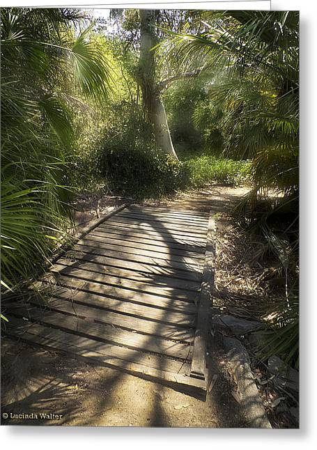 Greeting Card featuring the photograph The Journey Along The Path Comes With Light And Shadows by Lucinda Walter