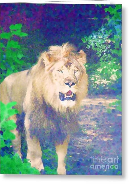 Greeting Card featuring the photograph The King by Diane Miller