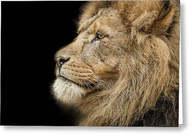The King Is Dead Long Live The King Greeting Card by Paul Neville
