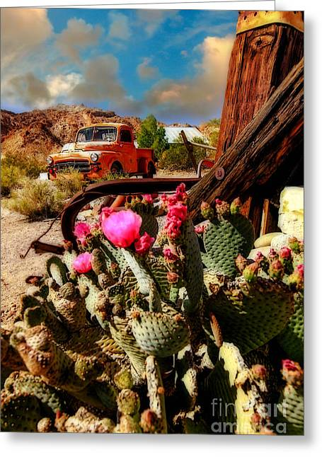 The Kings Ride Greeting Card by Brenda Giasson