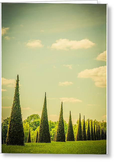 The Knot Garden's Triangular Landscaping Greeting Card by Lenny Carter