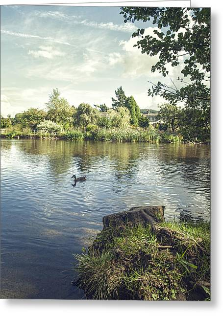 The Lake Greeting Card by Amanda Elwell