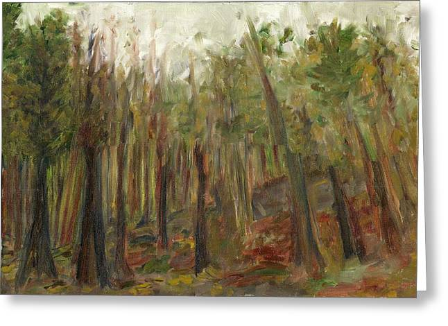 The Land Between II Greeting Card by David Dossett