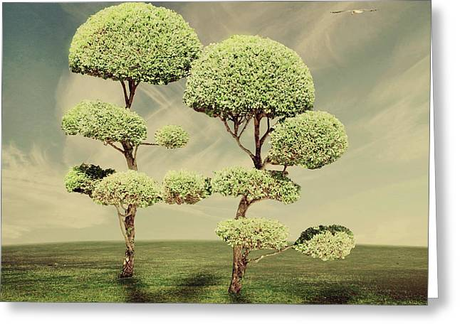 The Land Of The Lollipop Trees Greeting Card by Linda Lees