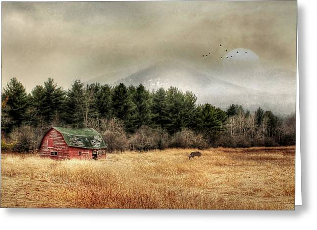 The Last Stand 2 Greeting Card by Lori Deiter